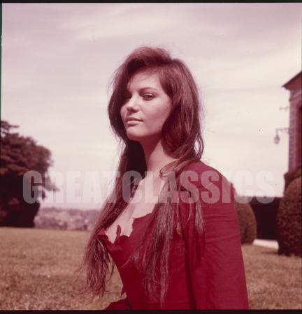 Claudia Cardinale Young Sey S Original Transparency Basch