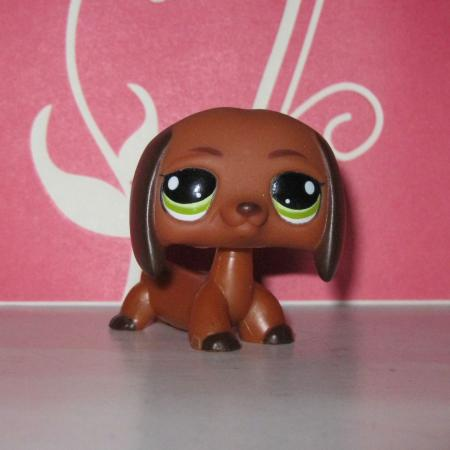 Lps Dachshunds On Shoppinder