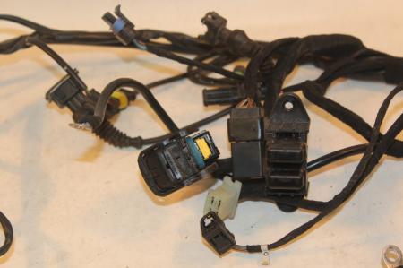 ducati multistrada 1000s ds 1000 2005 main wiring harness. Black Bedroom Furniture Sets. Home Design Ideas