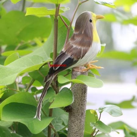 1x fausse artificiel plumes oiseau r aliste jardin d cor for Oiseau decoration jardin