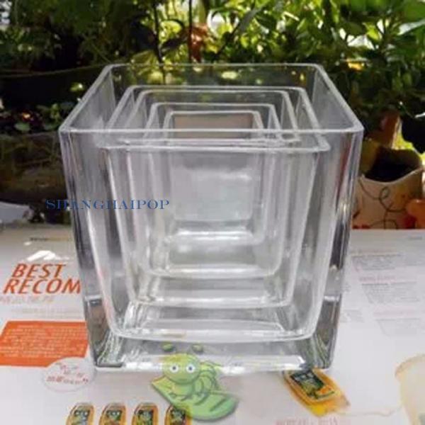 1x durchsichtiges glas blumentopf quadrat gartenpflanze for Blumentopf glas