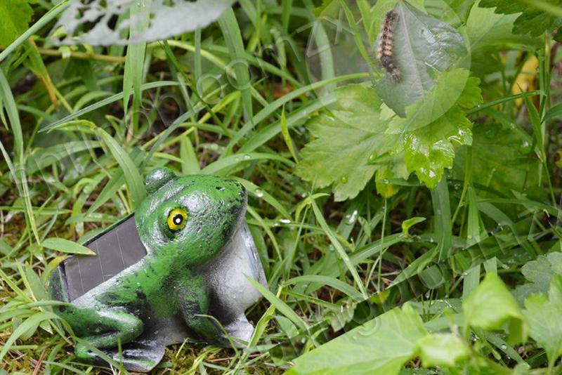 Neu tiere solarlampe garten deko leuchte frosch in garten for Deko garten tiere
