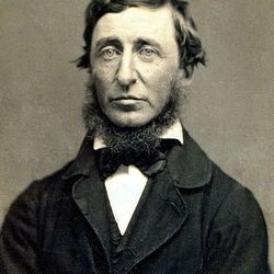 Benjamin d. maxham   henry david thoreau   restored
