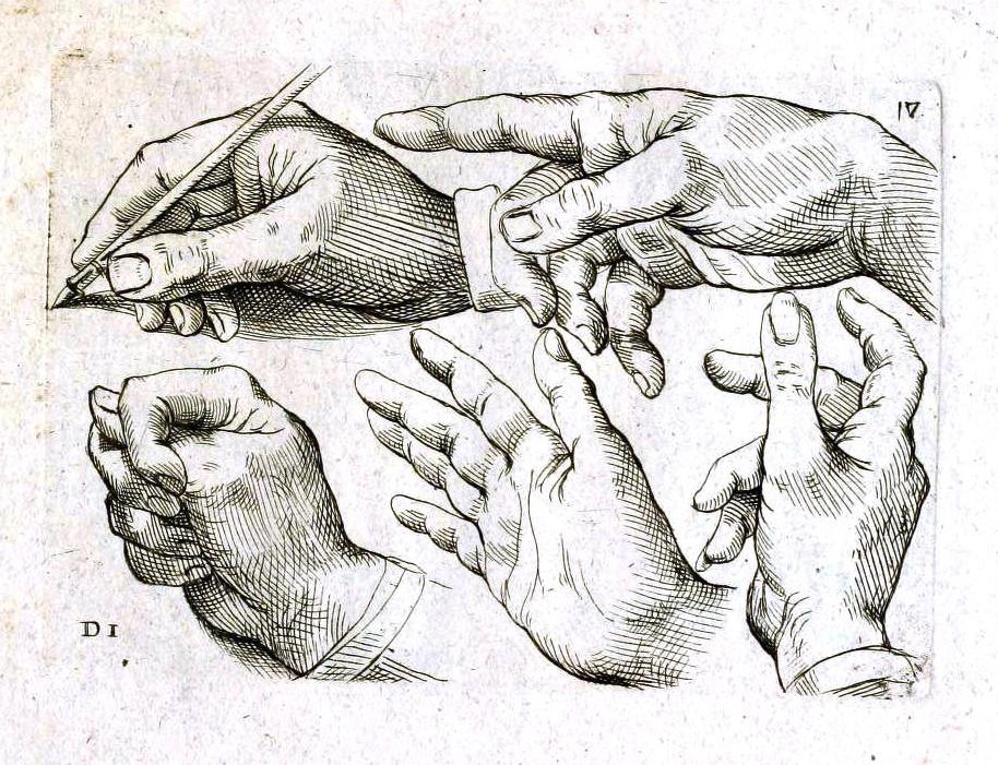 medical_anatomy_hands
