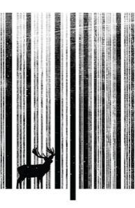To Scan a Forest
