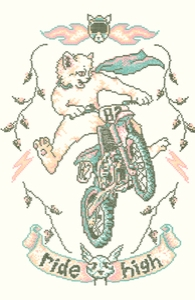 Motocross-Stitch Kitteh
