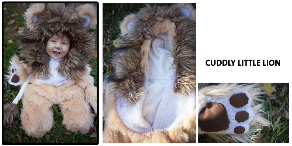 vote for cuddly lion