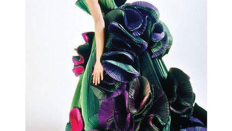 fashion by design by janice greenberg ellinwood pdf