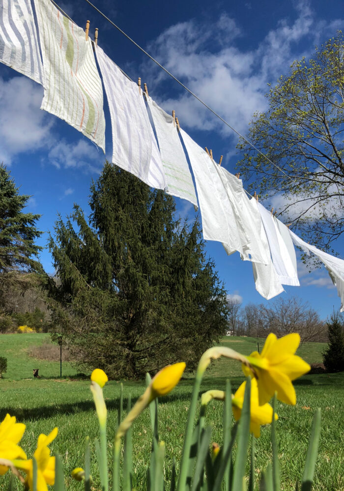 Wash hanging outside in the sunshine on a clothesline