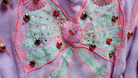 Closeup. of Zandra Rhodes dress detail
