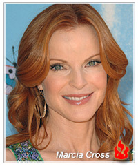 Marcia Cross hairstyles