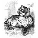 Rutherford B Hayes' Policies Strengthening the 'Solid South'- Republican Lamb Devoured by Democratic Tiger