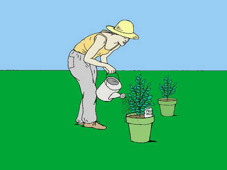 A woman watering plants