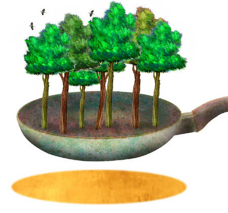 Trees in a frying pan