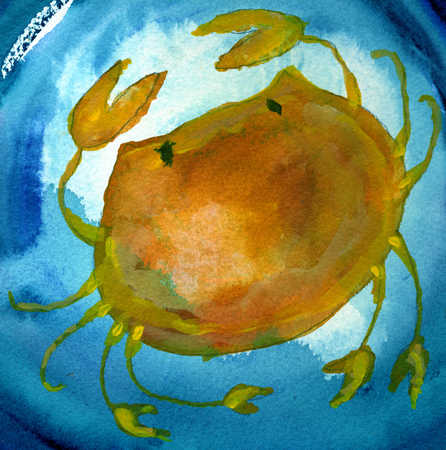 A crab in blue background