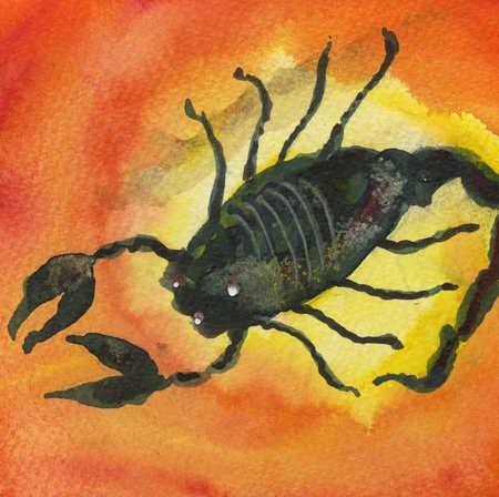 Watercolor of scorpion