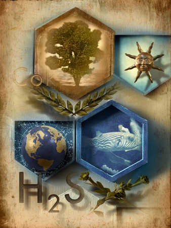 Tree, sun, globe and fish and chemical symbols