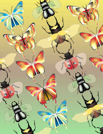 Rows of butterflies and bugs