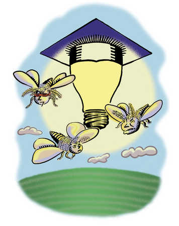 Bugs flying around lightbulb with scholar's hat on