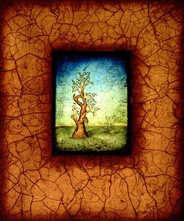 Tree In Frame