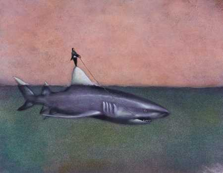 Man Riding Shark