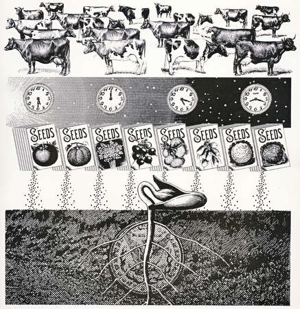 Cows, clocks and vegetable seeds above sprouting plant and coin