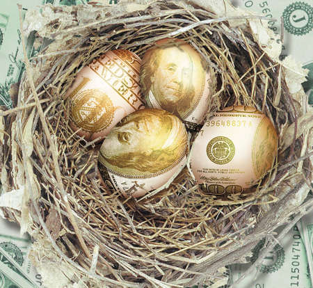 Birds nest filled with $100 bill-covered eggs