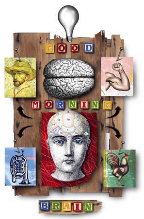 Montage of items showing human head, human brain, light bulb, biceps muscle, Van Gogh, tuba, chicken and the words 'Good morning brain'