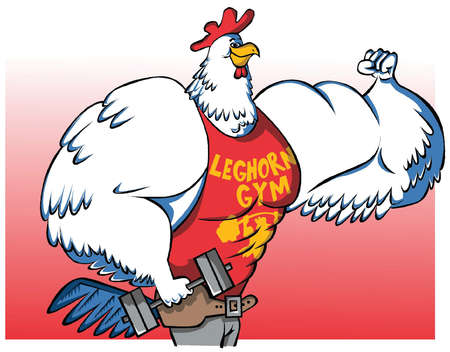 Muscular leghorn chicken holding weights and flexing his muscles
