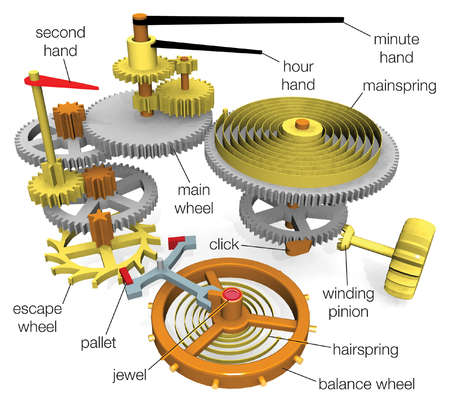 Typical components in a watch powered by a mainspring