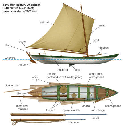The early 19th-century whaleboat was towed by a harpooned whale until the animal tired Lances were then used for the kill