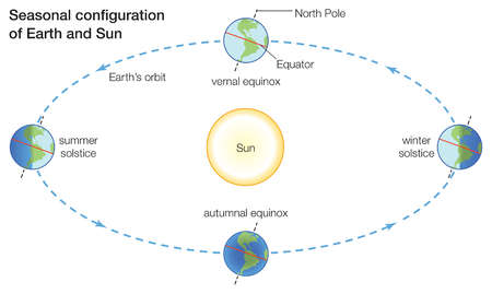 Seasons change because more direct sunlight falls on some parts of Earth than others at different times of the year