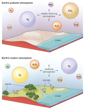 amazing atmosphere of the earth essay After completing this lesson, you will be able to describe the layers of the earth's atmosphere, what they contain, and the components (gases) that.