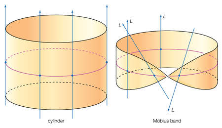 In following the circle around the Mobius band, the line L twists, and the lines cannot be made to point in the same direction