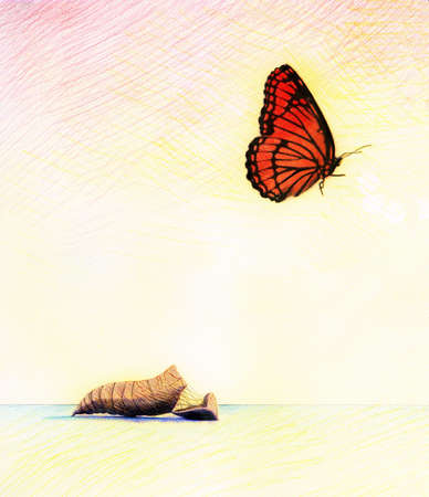 Butterfly flying away from cocoon