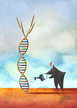 Businessman watering DNA wheat helix