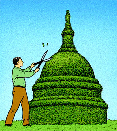 Man clipping hedge to shape of Capitol building