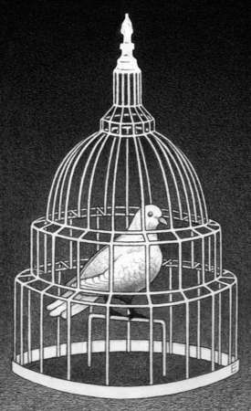Dove in Capitol building cage