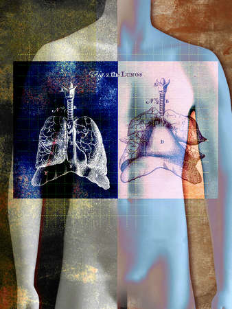 male figure with lung diagrams, dotted grid
