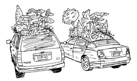 Trees and plants growing on rooftops of cars
