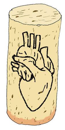 Human heart drawn on corkscrew