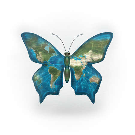 Butterfly with world map on its wings