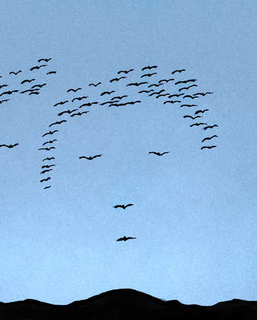 Flock of birds forming face in sky