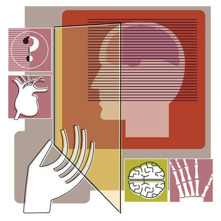 Human organ images