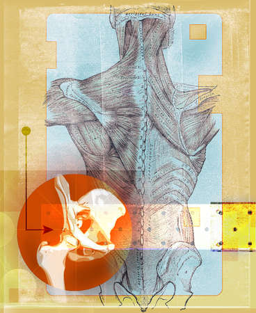 Anatomy drawing with hip joint inside orange circle with colorful squares and diagrams.