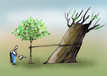 Man watering young tree tied to old tree