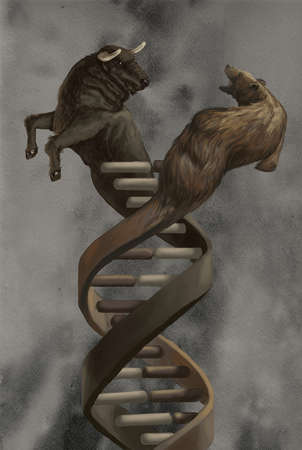 DNA strand made up of a bull and bear
