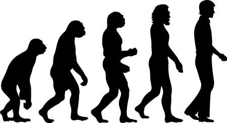 Evolution from Ape to Man