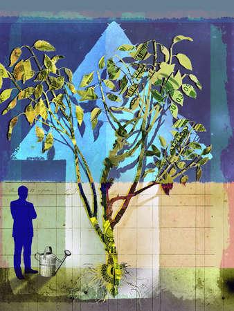 Montage of male silhouette,money tree,brick wall,tree,watering can,upward arrow.