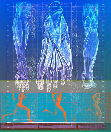 Montage of person running with physiology of foot and leg